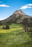 Montagna di Greyrock dal prato Fotografia Stock Libera da Diritti