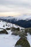 Montagna di Guadarrama nell'inverno spain Fotografia Stock