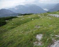 Montagna di Hallstatt Austria 4 immagini stock