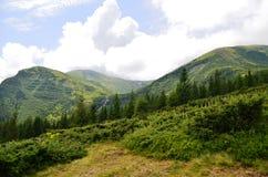 Montagna di Hoverla Fotografia Stock