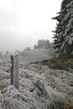 Montagna di inverno Immagini Stock