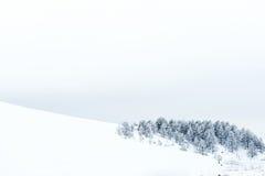 Montagna di inverno fotografie stock libere da diritti