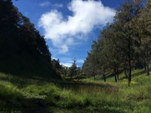 Montagna di Lawu fotografia stock