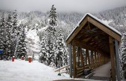 Montagna di legno Washington della neve del ponticello coperto Immagine Stock