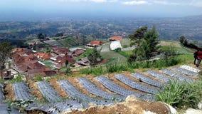 Montagna di Merbabu immagine stock libera da diritti