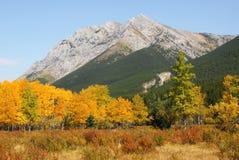 montagna di paesaggio Immagine Stock Libera da Diritti