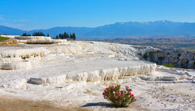 Montagna di Pamukkale, Turchia Fotografia Stock Libera da Diritti