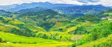 Montagna di panorama con i bei campi a terrazze Immagine Stock Libera da Diritti