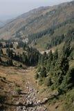 Montagna di punta Tangshan, Fotografia Stock Libera da Diritti
