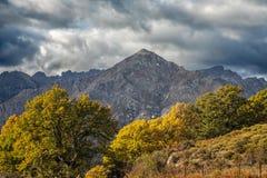 Montagna di San Parteo in Corsica con gli alberi autunnali Fotografia Stock Libera da Diritti