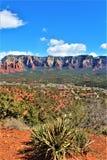 Montagna di Sugarloaf, traccia della sommità, la contea di Maricopa, Sedona, Arizona, Stati Uniti fotografie stock libere da diritti