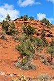 Montagna di Sugarloaf, traccia della sommità, la contea di Maricopa, Sedona, Arizona, Stati Uniti immagini stock