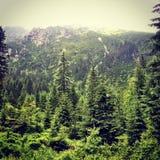 Montagna di Tatras Immagine Stock