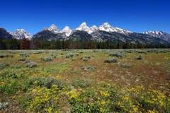 Montagna di Teton   fotografia stock