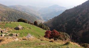 Montagna di Triund. L'Himalaya. L'India fotografia stock libera da diritti
