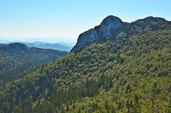 Montagna di Veliki Kozjak Fotografie Stock