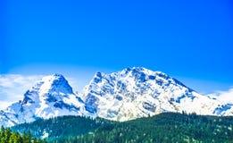 Montagna di Watzmann nelle alpi bavaresi da Berchtesgaden Fotografia Stock Libera da Diritti