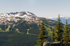 Montagna di Whistler Immagini Stock Libere da Diritti