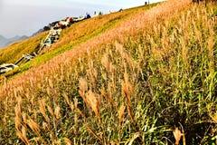 Montagna di Wugong Immagini Stock Libere da Diritti