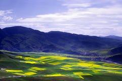 Montagna di Zhuoer Fotografia Stock