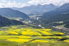Montagna di Zhuoer della contea della Cina Qinghai Qilian scenica Fotografia Stock Libera da Diritti
