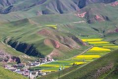 Montagna di Zhuoer della contea della Cina Qinghai Qilian scenica Immagini Stock