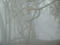 Montagna a distanza coperta in foschia Fotografie Stock Libere da Diritti