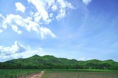Montagna e campo con cielo blu Fotografia Stock Libera da Diritti