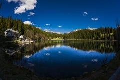 Montagna e foresta immagini stock libere da diritti
