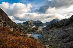 Montagna e lago, con la pianta in priorità alta Fotografie Stock Libere da Diritti