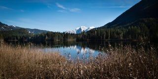 Montagna e lakeview a Hintersee in Bavarias Berchdesgaden Fotografia Stock