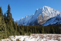 Montagna e prato della neve Immagine Stock Libera da Diritti