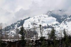 Montagna ed albero della città di Manali Himachal Pradesh in India immagini stock libere da diritti