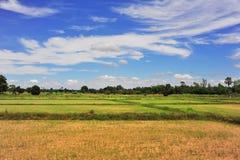 Montagna ed azienda agricola Fotografia Stock