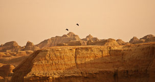 Montagna ed uccelli Fotografie Stock Libere da Diritti