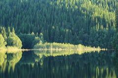 Montagna, fiume ed alberi Immagine Stock