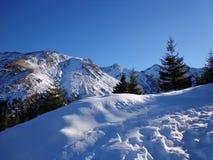 Montagna fredda Fotografia Stock Libera da Diritti