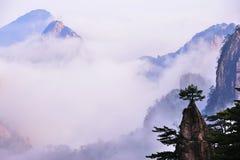 Montagna (gialla) di Huangshan Immagini Stock
