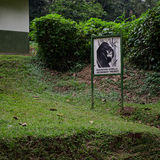 Montagna Gorilla Veterinary Project Signage Fotografie Stock