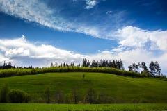 Montagna Jahorina immagini stock
