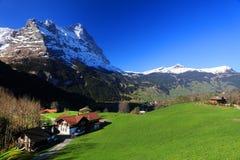 Montagna 3970m in primavera, Berner Oberland di Eiger Immagini Stock Libere da Diritti