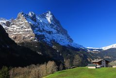 Montagna 3970m in primavera, Berner Oberland di Eiger Immagini Stock
