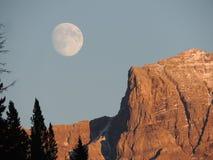 Montagna maestosa di Jasper National Park Immagine Stock