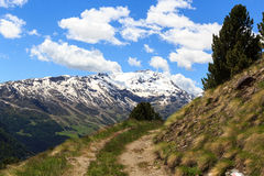 Montagna Monte Sobretta e percorso di escursione nelle alpi di Ortler Fotografia Stock