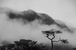 Montagna nebbiosa fotografie stock libere da diritti
