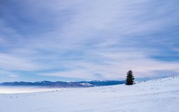 Montagna nel paesaggio di notte di inverno fotografia stock libera da diritti