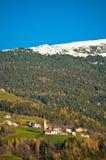 Montagna nell'inverno con i legno verde i e la prima neve sul Fotografia Stock