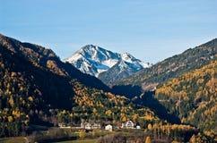 Montagna nell'inverno con i legno verde i e la prima neve sul Fotografia Stock Libera da Diritti
