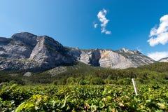 Montagna nella valle di Sarca - Trentino Italia Immagine Stock