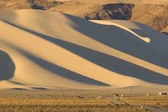 Montagna Nevada della sabbia Fotografia Stock Libera da Diritti